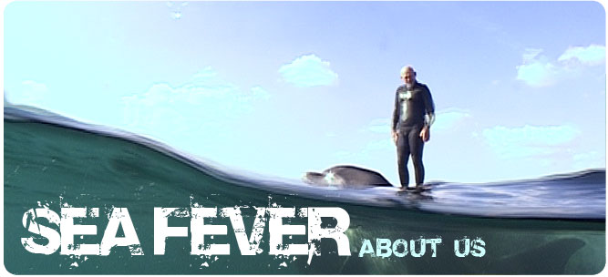 about sea fever